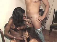 You're invited to this naughty threesome where plenty of hot dick sucking unfolds. The girl ...