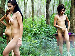 in the Thai Jungle with Music and naked Ladyboys :)