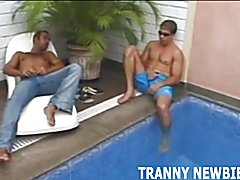 You and a friend really liked the look of this tranny, so you thought it would be a great id...