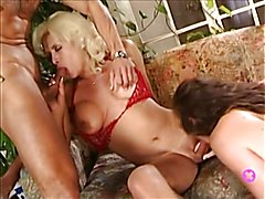 Shemale Porn