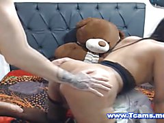 Hot shemale with a nice round booty and sweet tight ass hole receiving a hard fuck from behi...