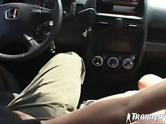 Driving a shemale slut home