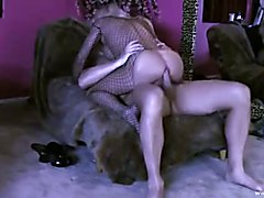 Hard fucking for a luxery TS in fishnet lingerie