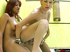 If you love tranny babes and just can not get enough of shecock sucking and fucking action t...
