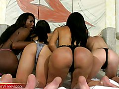 Four black and latina trannies are banging big shemale asses