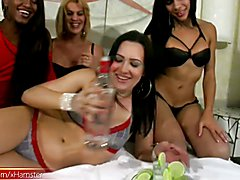 Carla, Danny, Latoya and Nicolle are naughty shemales that love to party. These sexy babes k...