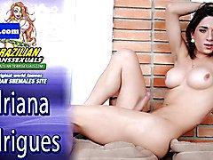 Busty latina tranny stroking her bigcock