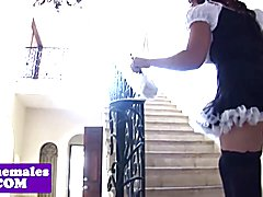 Shemale maid buttfucked by tranny boss