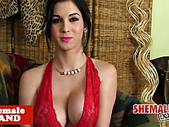 Bigtitted Cuban tranny in sexy lingerie strips and jerks solo