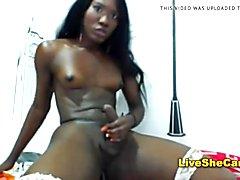 Sexy ebony tran stroking on Web Cam
