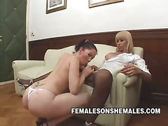 Shemale Sheina is the boss at her office and she's horny for her new female secretary. Watch...